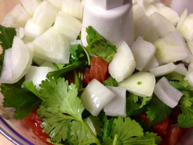 salsa onions