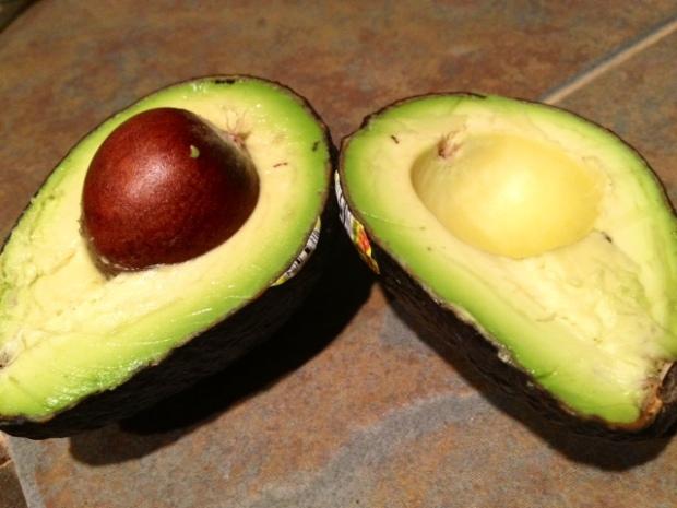 chocolate avocado pudding avocados