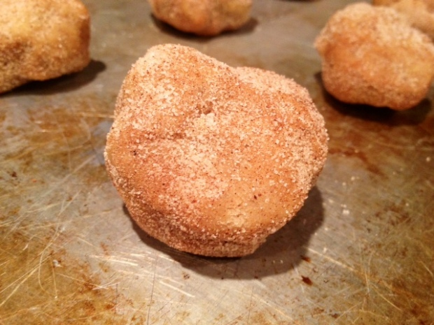 brown butter snickerdoodles dough ball2