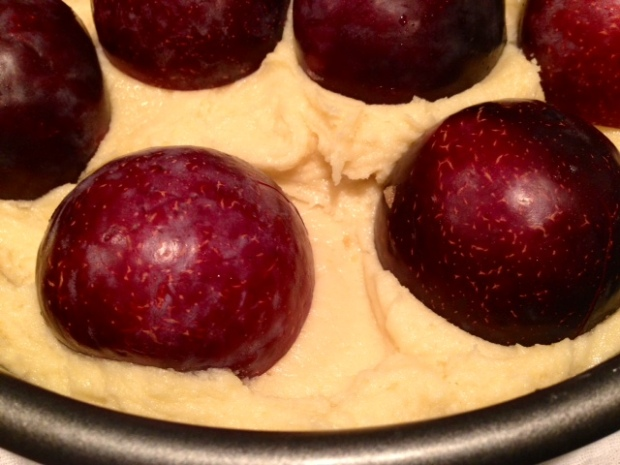 plum torte batter pan plums closeup
