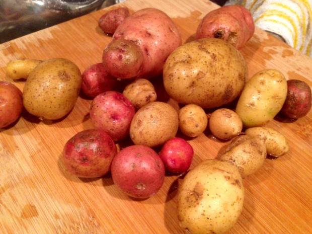 creamy garlic mashed potatoes raw potatoes