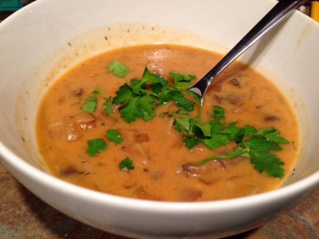 Hungarian Mushroom Soup from Souper Jenny